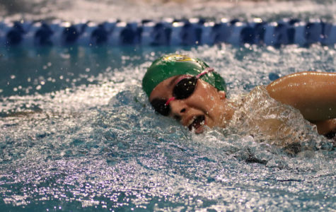 Swim and Dive compete at state