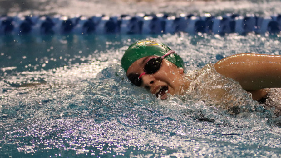 Swim+and+Dive+compete+at+state