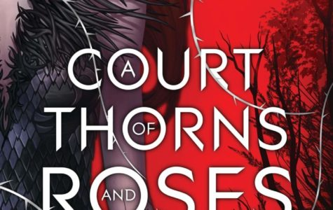 A Court of Thorns and Roses- A Book Review