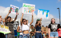 Protesters stand along to show their support for the climate. Hundreds of youth gathered on the steps of the Collin College Courthouse to protest the pollution of the environment.