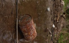 """A tin can rests abandoned alongside a railroad track in Mckinney. The area holds  garbage, including plastics and metals, scattered across it for lengths almost as long as a mile. According to the Balance smb, many day-to-day items can take a long time to decompose. For example, metals like those in a tin can can take 50 years to decompose. Aluminum can take up to 500 years, and plastics can take up to twice that amount of time - 1,000 years. """"It upsets me,"""