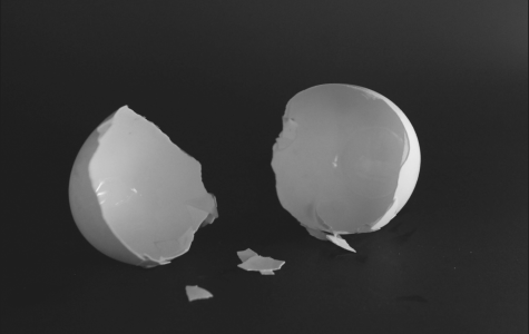 Student photographer Christi Norris uses eggshells to represent the empty feeling those who have depression often describe.