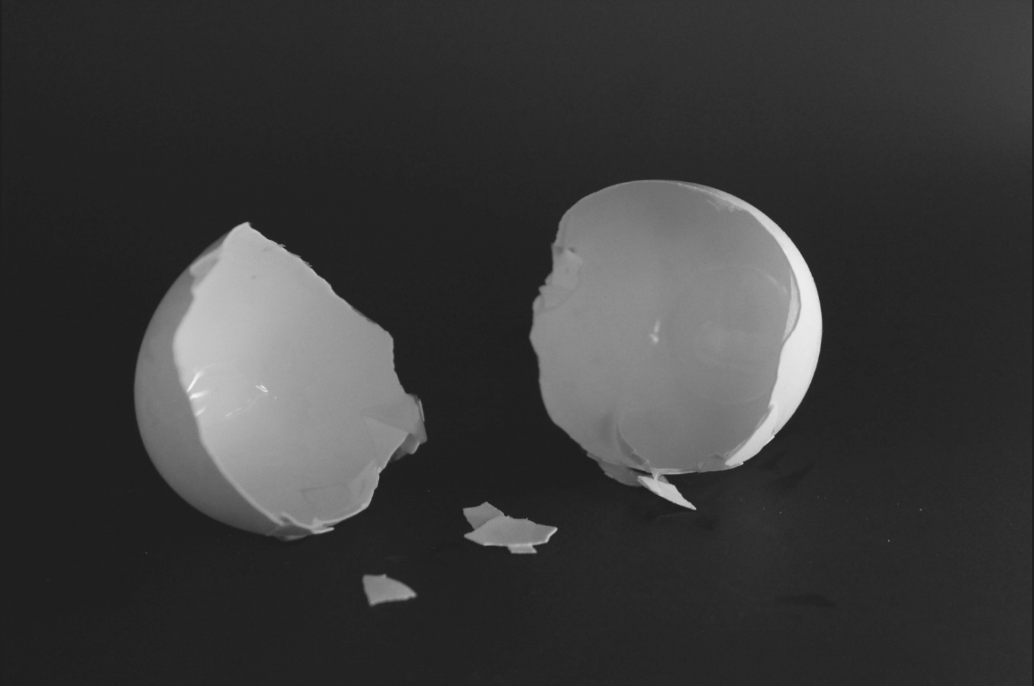 """Student photographer Christi Norris uses eggshells to represent the empty feeling those who have depression often describe. """"Depression on its own feels as if all of your insides have been scooped out and all is left is an empty shell,"""" Norris said. Her article about anxiety and depression not only describes what it"""