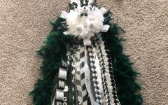 Glittering in the light, a homecoming mum lays out in its feathery display. Homecoming week will be from Nov. 16 to Nov. 20. The homecoming football game is against Denton Braswell Nov. 20.