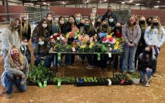 Standing beside their entries, members of the Prosper FFA chapter show off their winnings. FFA members competed on Friday, Jan. 8, at the Collin County Livestock Show in both floral arrangement competitions and plant growing competitions. Several students took home ribbons, including junior Brooke Black who in addition to winning first place in the symmetrical silk arrangement competition, also won reserve champion of the entire show.