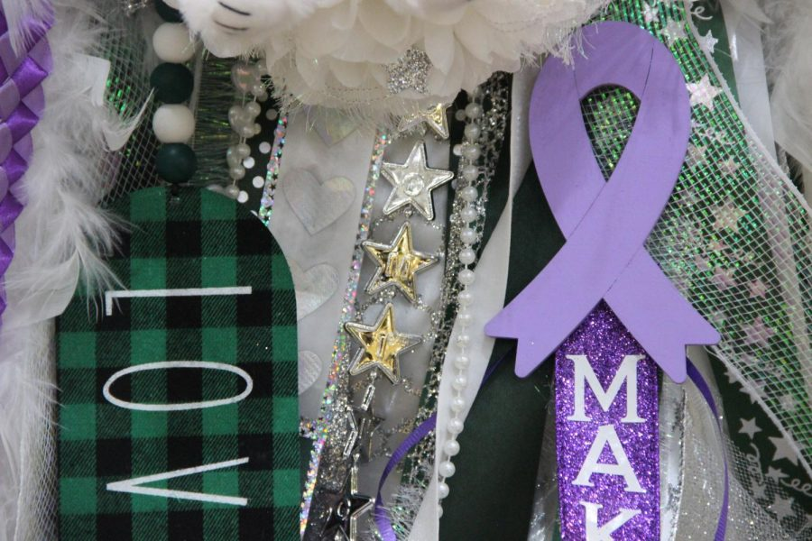 Featuring a purple ribbon, a mum sits alone. The purple ribbon serves as a tribute to senior varsity cheerleader Makayla Noble. Noble recently had spinal surgery after a mishap tumbling accident.